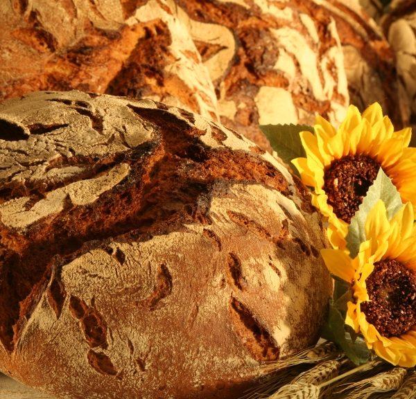 Gassenhauer-1000g-ZORN-meinGeschmack.de-Bäckerei-Konditorei